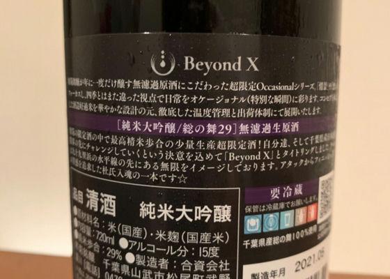 Beyond X(ビヨンドX)